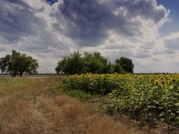 Фотография: Перед бурей