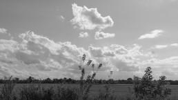 Фотография пейзаж